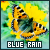 Blue Rain - Katie's collective